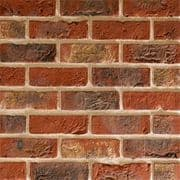 TBS Ashworth Medium Multi Brick (Pack 632)