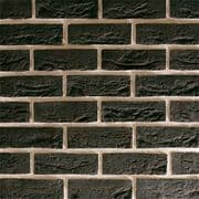 TBS City Black Brick (Pack 608)