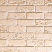 TBS City White Brick (Pack 608)