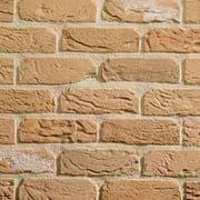 TBS Olde Sandford Mixture Brick (Pack 730)