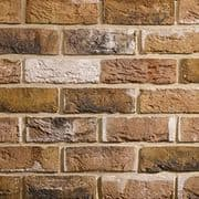 TBS Tigra Multi Brick (Pack 608)
