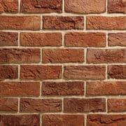 TBS Willingdon Mixture Brick (Pack 730)