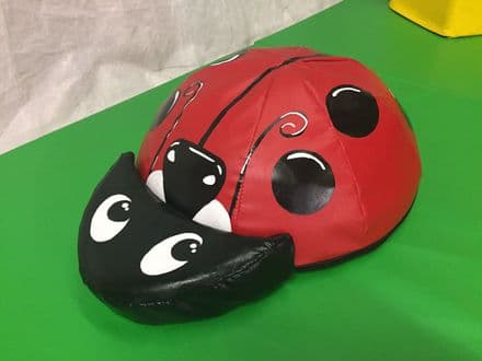 Lady Bird soft play approx 24 x 20 x 8 inch quality foam hand painted