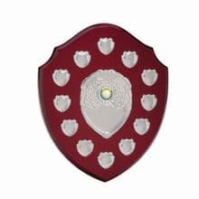 12 years Frontier Annual Shield