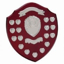 Supreme Annual Shield Award  (17 Year)