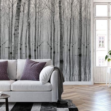 Birch Forest in the Water wall mural wallpaper Premium