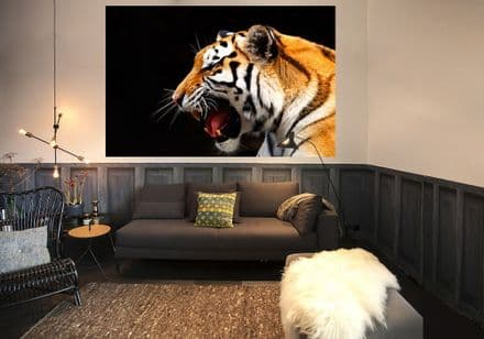Great Tiger wild cat wallpaper for wall - S