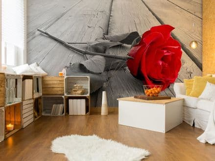 Red rose wall mural for wall