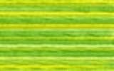 4069 Margarita - DMC Color Variation Thread