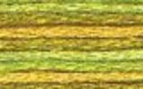 4070 Autumn Leaves - DMC Color Variation Thread