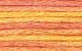 4100 Summer Breeze - DMC Color Variation Thread