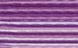 4255 Royal Plum - DMC Color Variation Thread
