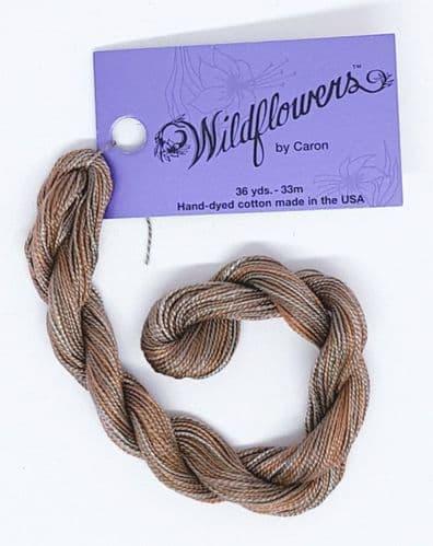 Cedar 136 Caron Wildflowers