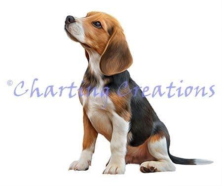 Charting Creations Beagle 2 printed cross stitch chart