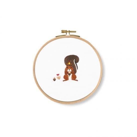 DMC Acorns! Squirrel embroidery kit