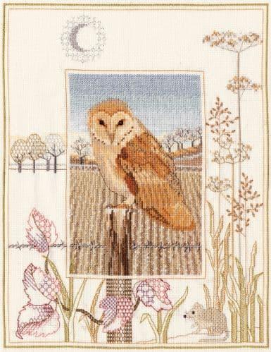 Derwentwater Designs Barn Owl cross stitch kit