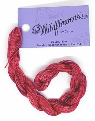 Flame 045 Caron Wildflowers