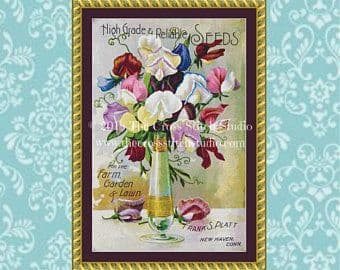 The Cross Stitch Studio Sweet Peas in Vase Printed cross stitch chart