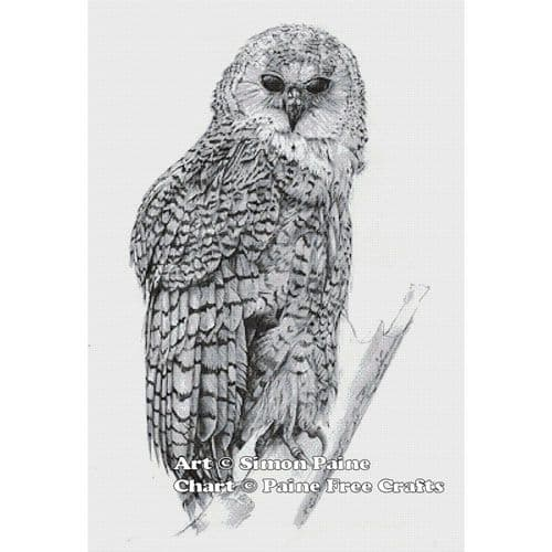 Barred Owl by Paine Free Crafts printed cross stitch chart