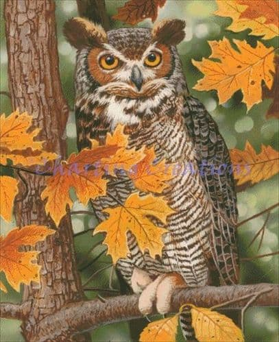 Charting Creations Autumn Owl printed cross stitch chart