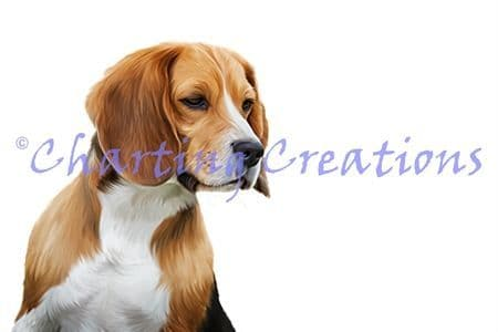 Charting Creations Beagle printed cross stitch chart