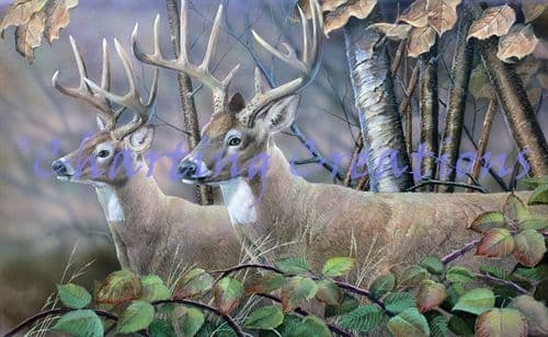 Charting Creations Blackberry Vines White Tail Deer printed cross stitch chart