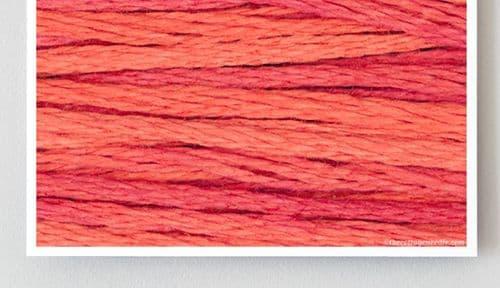 Grapefruit 2245 Weeks Dye Works thread