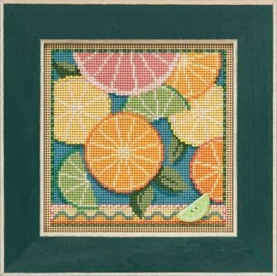 Mill Hill Citrus beaded cross stitch kit